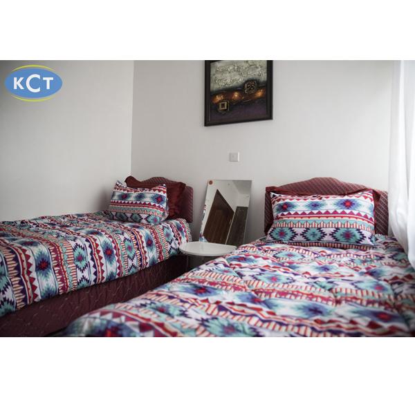 3 x 6 bed